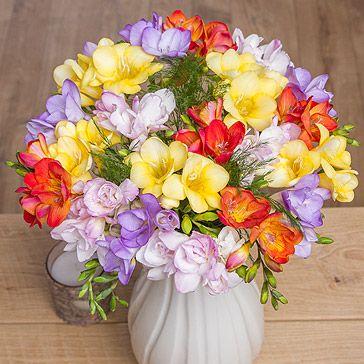 Bunches Co Uk Fragrant Freesias Ff20 Send Someone Special The Sweet Smelling Fragrance Of 20 Long Stemmed Dutch Fre Arranjos De Flores Flores Naturais Flores