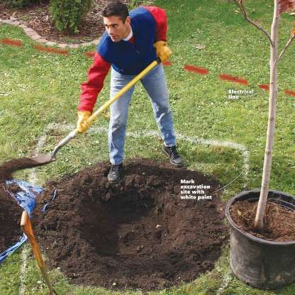 15 Expert Tips For Digging Holes Digging Holes Trees To Plant Garden Design Plans