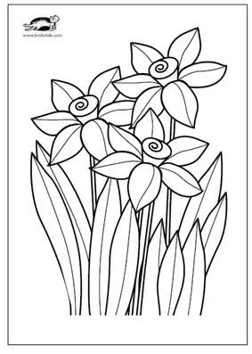 Zonkile Abstract Art For Kids Daffodils Floral Graphic Design