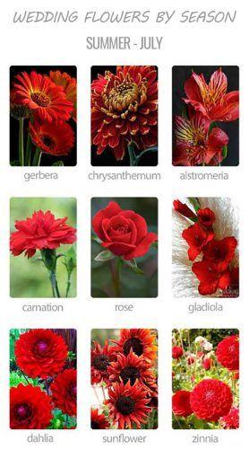 Choosing Wedding Flowers By Season Wedding Forward Wedding Flowers Season Wedding Flowers July Flowers