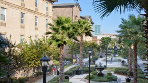 Condos To Rent Near Savannah College Of Art And Design