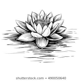 Vector Waterlily Water Waves Lotus Illustration Stock Vector Royalty Free 490050640 In 2020 Water Lily Tattoos Lotus Tattoo Design Flower Tattoo Designs