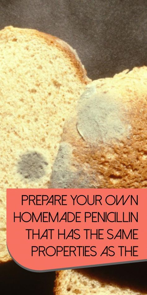 Prepare Your Own Homemade Penicillin That Has The Same Properties As The Pharmaceutical One