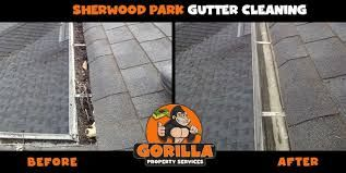 Window Cleaning St Albert Cleaning Gutters Eavestrough Cleaning Window Cleaning Services