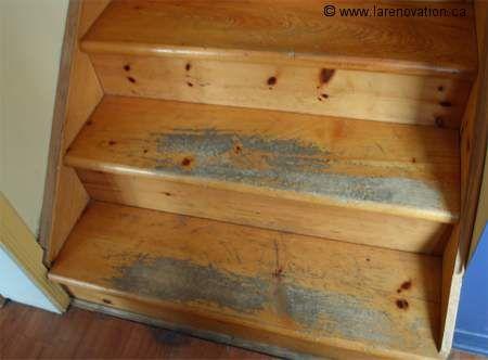 Photo D Un Escalier En Bois Franc Au Revetement Abime Escalier