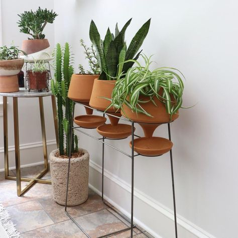 Set of 3 Natural Clay Funnel Pots on Wire Console-Urban Greenhouse-Holistic Habitat