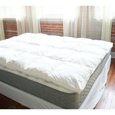 Arsuite 2 Duck Feather Mattress Topper Wayfair Mattress Top Beds Bed Sizes