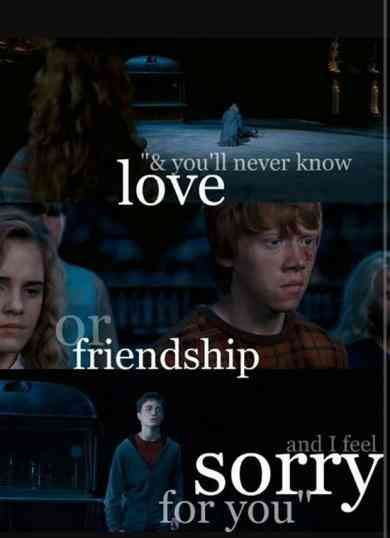 50 Best Harry Potter Quotes About Friendship Love And Family Harry Potter Quotes Harry Potter Friendship Harry Potter Series