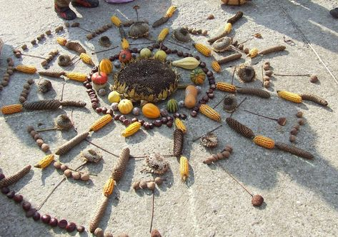 mandala termésekből