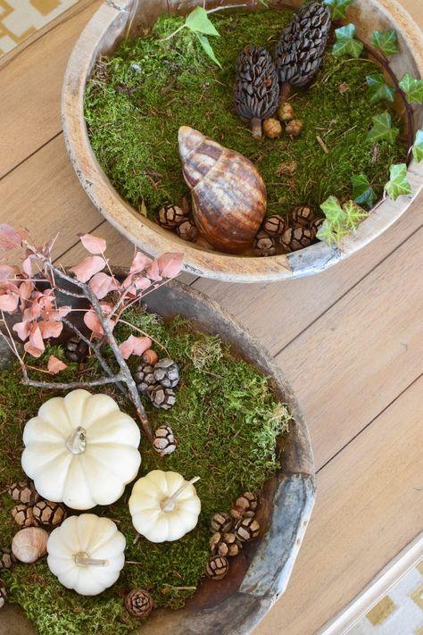 Wie Ihr Eine Schale Kreativ Mit Naturmaterialien Dekoriert