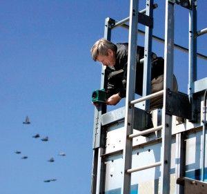 Keeping The Birds Away Bird Control Facilities Maintenance Bird