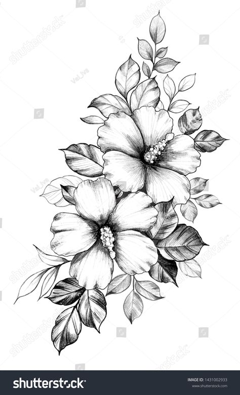 How to Hibiscus Flower Drawing How to Hibiscus Flower Drawing. How to Hibiscus Flower Drawing. Hibiscus Flower Drawing at Getdrawings in hibiscus flower drawing Hand Drawn Hibiscus Flowers Leaves Isolated Stock Hawaiian Flower Tattoos, Hibiscus Flower Tattoos, Hawaiian Flowers, Hibiscus Flowers, Lilies Flowers, Flowers Garden, Flower Tattoo Drawings, Flower Tattoo Designs, Lirio Tattoo