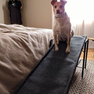 Inexpensive Doggie Ramp Avec Images Rampe Pour Chien