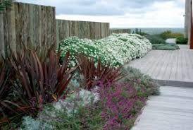 Como Combinar Formios Con Otras Plantas Busqueda De Google Jardines Jardines Nativos Plantas