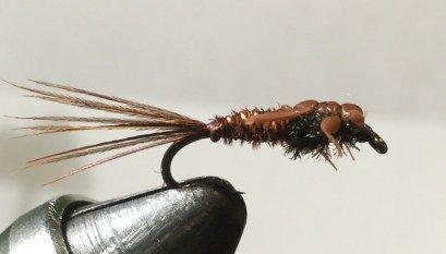 10 Bead Head Flash Harry Woolly Bugger