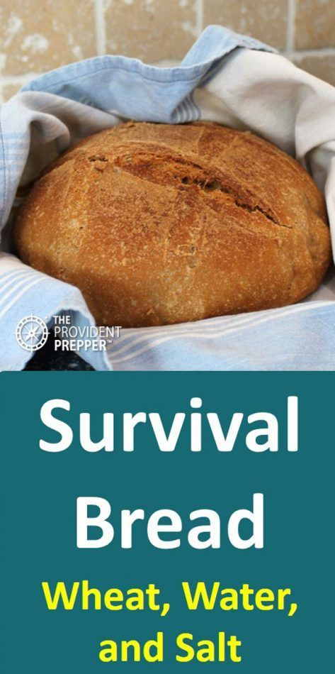 Incredible Survival And Daily Bread Using Only Wheat Salt And