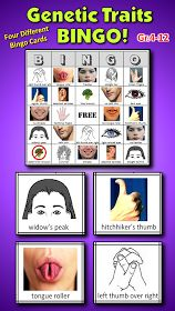 Get your students hooked on genetics with this fun activity. Tongue-rollers, hitchhiker's thumbs, Vulcan fingers and more! Four different BINGO CARDS and Teacher's Instructions included.<< brief traits lecture and then play BINGO.