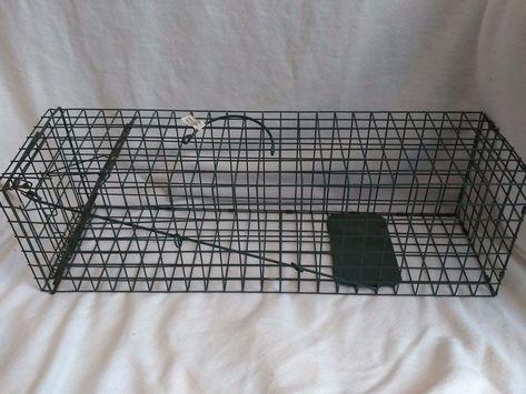 Duke trap animal cage model 1105 single door pest rodent wildlife