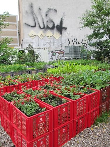 Using crates for raised beds without having to build anything.  Urban Gardens