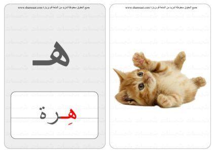 حرف كلمة صورة بطاقات الحروف الحيوانات 6 6 Home Decor Rugs Bath Mat