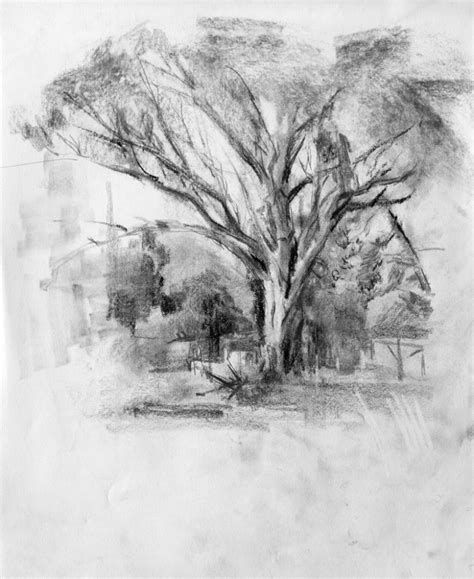 Steps For Portrait Drawing With Charcoal Landscape Pencil Drawings Landscape Drawings Realistic Drawings