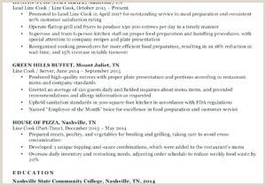 Restaurant Owner Resume Sample In 2020 With Images Resume