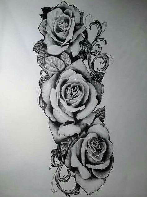 Drawing Roses Sideways, lower back