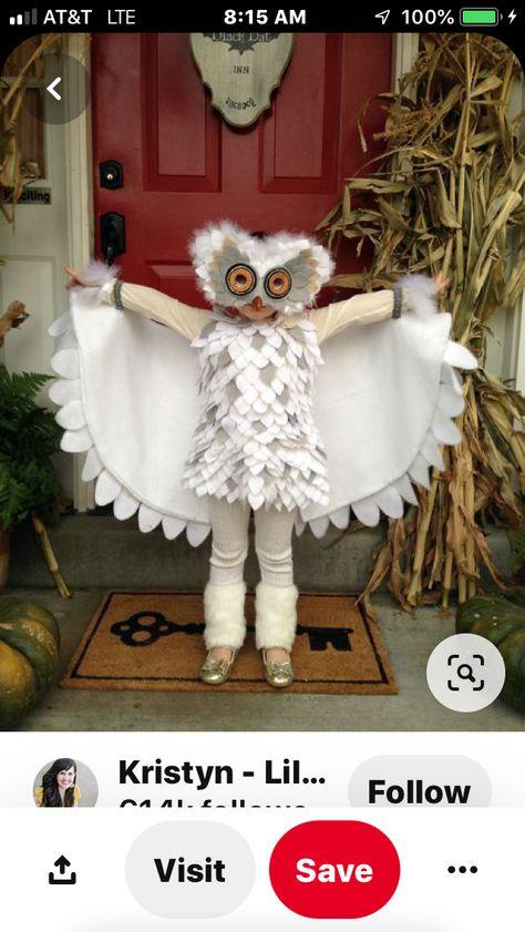 Fiestas Guirca Owl costume owl baby owl