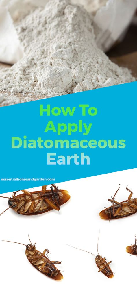 How To Apply Diatomaceous Earth Indoors And Outdoors Rid Of