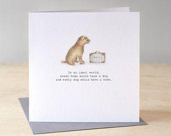 Border Terrier Card Funny Dog Birthday Card Border Terrier Illustration Cute Sleeping Dog Funny Dog Card Dog Lover Dog Birthday Card Dog Cards Dog Birthday