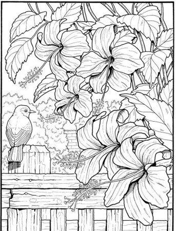 Blumen Ausmalbilder Ausmalen Coloring Coloringpagesforkids