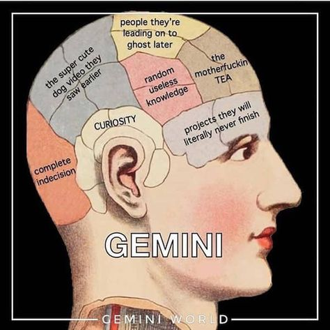 27 Funny Gemini Memes That Totally Get The Vibes Being A Gemini