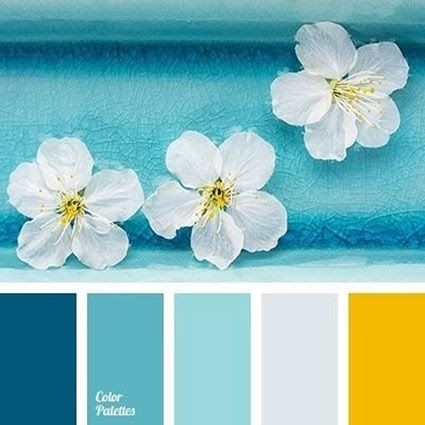 30 Warna  Cat  Interior Rumah  Biru  Tosca  Terupdate Saat Ini