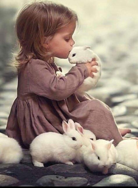 Like Rabbit, Like Panda :)
