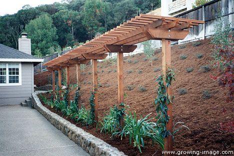 40 Diy Homemade Structures To Plant Vines Trellis Arbor Pergola