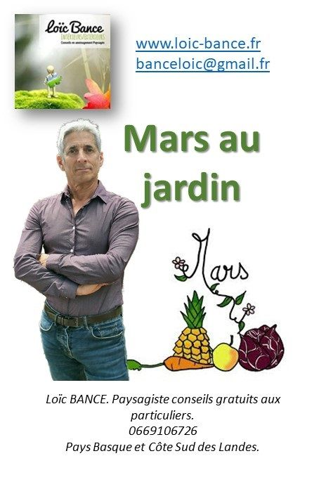 Mars Au Jardin Par Paysagiste Pays Basque Et Paysagiste