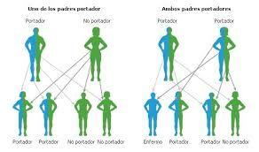 Pin On Genetica