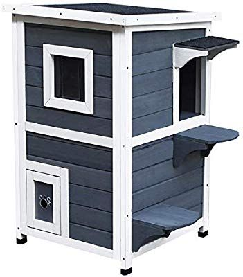 Amazon Com Pawhut Solid Wood 2 Floor Cat Condo Kitten Shelter With Window Pet Supplies Shelter Kittens Cat Condo Cat Pet Supplies
