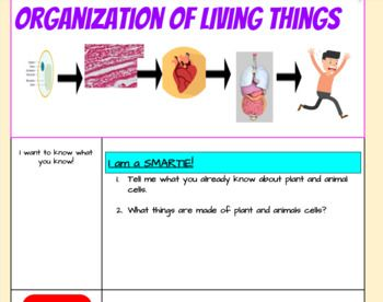 Product Description In This Hyperdoc Students Will Learn All About The Organization Of Living Things They Will W Learning Organization Organization Group Work
