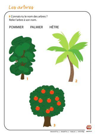 Arbres | Nature & Sciences | Pinterest | Écologie, Les arbres et ...