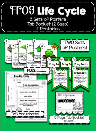 Frog Life Cycle Posters Booklet And Worksheets