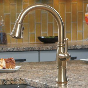 Delta Cassidy Single Handle Kitchen
