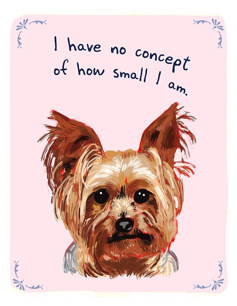 Yorkshire Terrier 5x7 Print of Original by tinyconfessions on Etsy, $12.00