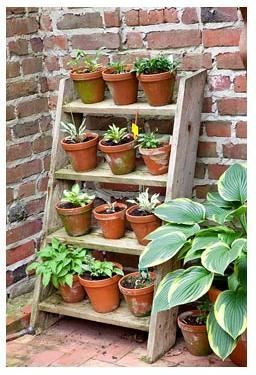 Stepped Ladder Type Plant Stand Herbgardenindoorstand Plant Stands Outdoor Vertical Herb Garden Garden Ladder