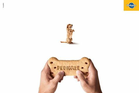 Pedigree: Joystick, 3