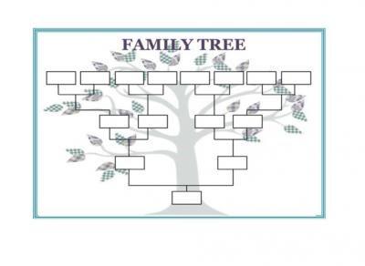 Design A Border Family Tree Design With The Border Family Tree
