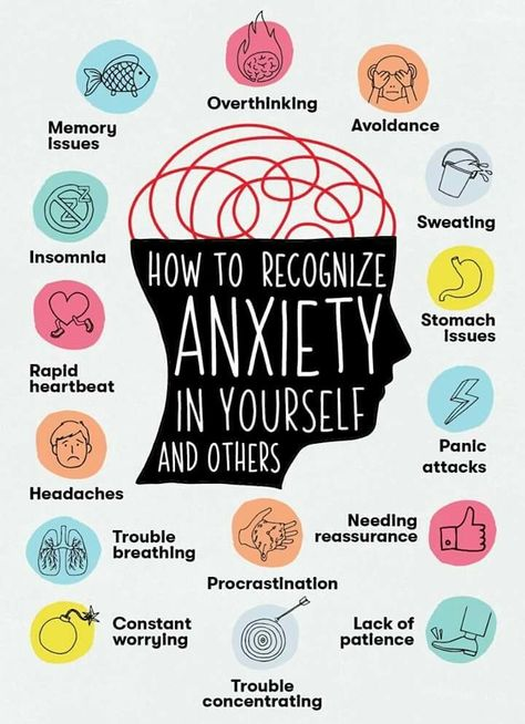 "Virginia sur Twitter : ""From this photo it seems that I do NOT have anxiety, I AM ANXIETY ITSELF.… "" ...Same."