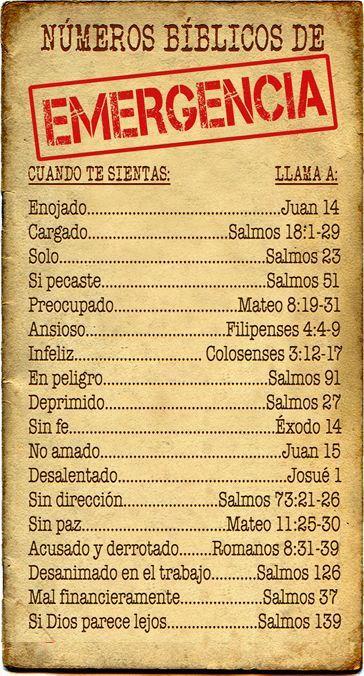 Qué leer en la biblia según lo que te suceda #Biblia #MensajePositivo #Amén