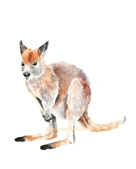 Wallaby Print Watercolor Wallaby Print Australian Gifts Australian Native Australian Animal Watercolor Baby Animal Print Baby Animal Drawings Baby Animal Prints Watercolor Animals