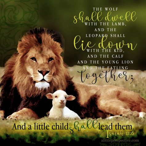 More about The Wolf Shall Dwell With The Lamb : A Spirituality For Leadership